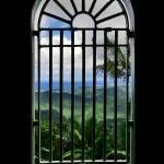 """IMPRISONED PARADISE"" by DanielRoxburgh"