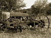 Antique Tractor In Sepia