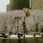 """Madison Square Park Snow"" by robvena"