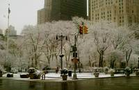 Madison Square Park Snow