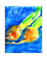 Orange Beets on Blue