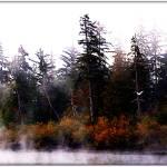 """""""Misty River"""" by CalamityJan08"""