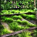 """High Line NYC Railroad Tracks"" by jbjoani2"
