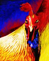 Vivid Rooster