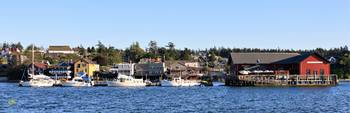 Coupeville from the Cove