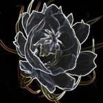 """""""Energy 1"""" by KelliDee"""