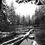 """Jordan River Snowfall II"" by GABrittImages"