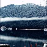 """Memories of Winter"" by CalamityJan08"