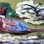"""Pheasant"" by AmaliaJonas"