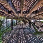 """South Beach Boardwalk 01"" by mpepe"