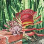 """Snake Plant"" by JustinMillard"
