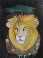 Lion contemplative