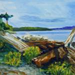 """Driftwood bay"" by fieldsendart"
