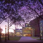 """Gates Law School at Twilight"" by Stewart"