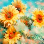 """sunflowers"" by rosalin"