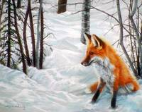 Fox in the Winter Woods