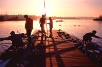 UW Crew Morning Practice
