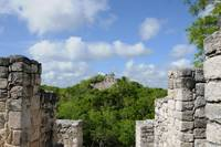 Calakmul Temple in the Mexican Jungle