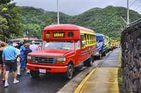 Colorful Buses