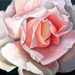 """""""Single Rose"""" by JamesKnowles"""