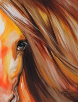 SIENNA SUNRISE EQUINE EYE