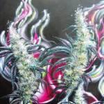 """daves artwork 046"" by DaveDeRykeArtwork"