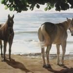 """""""Caballos de Mar"""" by JamesKnowles"""