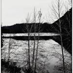 """""""December is black and white"""" by CalamityJan08"""