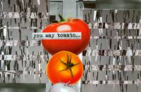 Diptych 2A: You Say Tomato...