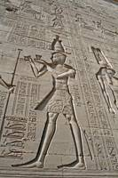 Hieroglyphs at Dendera Temple 12