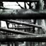 """Old monkey bars"" by darius"