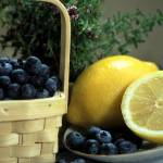 """Blueberry, lemon & Thyme, Heidi Brandt"" by GypsyChicksPhotography"