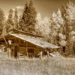 """""""Old Cabin"""" by wildlifegiftstore"""