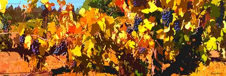 Autumn Vinyard