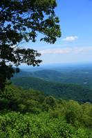 Blue Ridge Mountains of Virginia 2009 #11