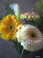 White and Yellow Gerbera and Calla 1