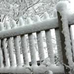 """Fence in Winter"" by georgerhunt"