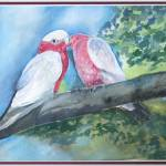"""Galahs Kissing"" by artypam"