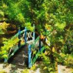 """Cayman Islands Tropical Garden Ornamental Bridge"" by JBrooker"