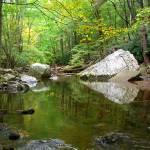"""""""Cascades Virginia"""" by dalegoorskey"""