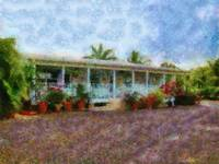 Cayman Islands Retreat At Lookout Farm Cottage