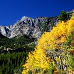 """Fall in Rocky Mountain Nat"