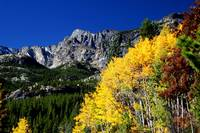 Fall in Rocky Mountain Nat'l Park