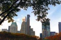 NYC skyline view from Central Park