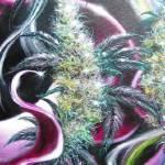 """Fantasy Marijuana Bud"" by DaveDeRykeArtwork"