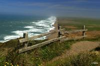 California Coast at Point Reyes.