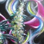 """Marijuana Artwork painting"" by DaveDeRykeArtwork"