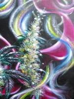 Marijuana Artwork painting