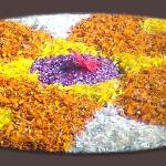 """Onam Flowers"" by AbinRaj"