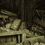 """Junk Shed"" by skullbone76"